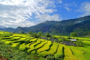 Muong Khuong Market-Lao Chai Trekking Easy 2Days 3Nights Tour-1night at hotel